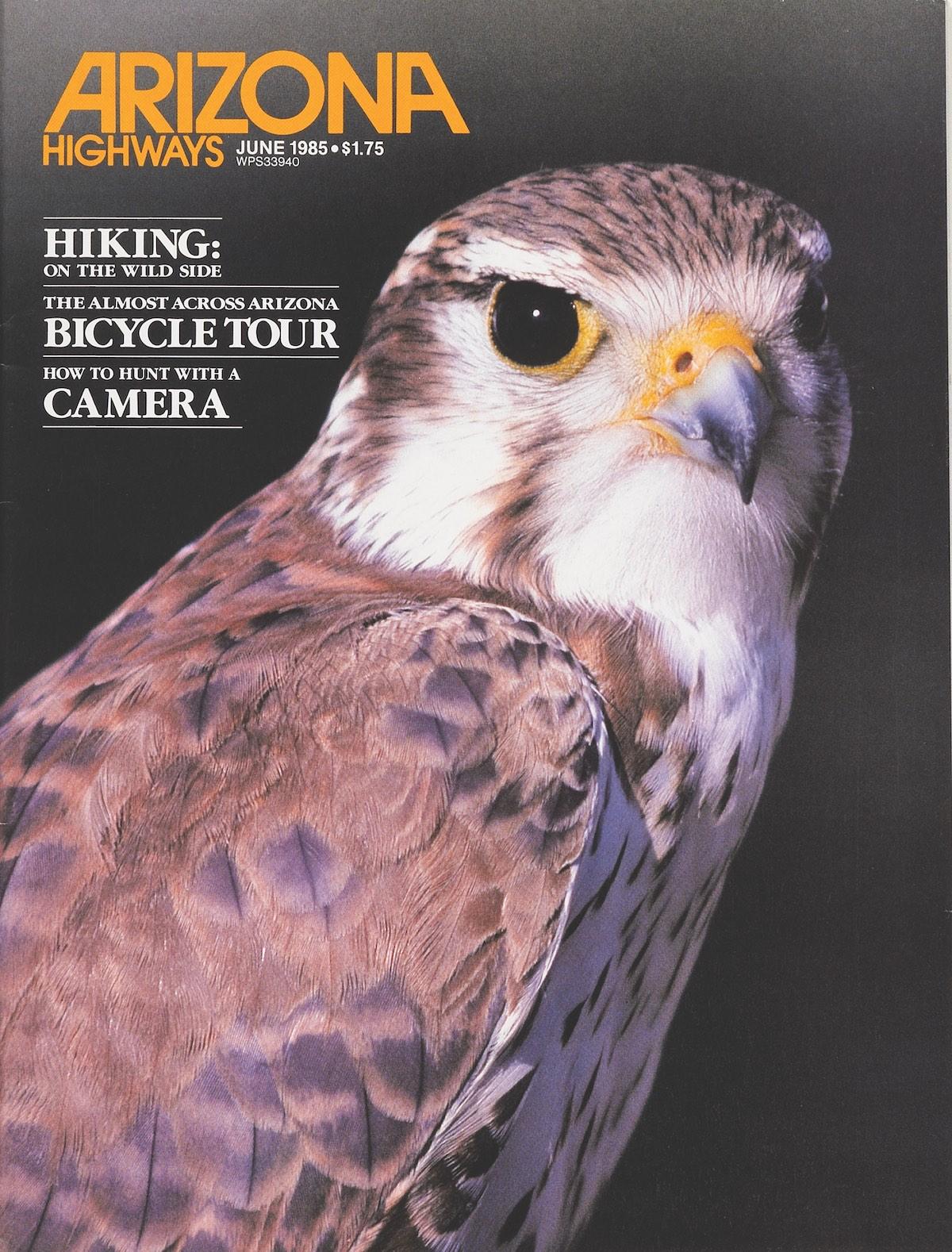 June 1985 cover of Arizona Highways