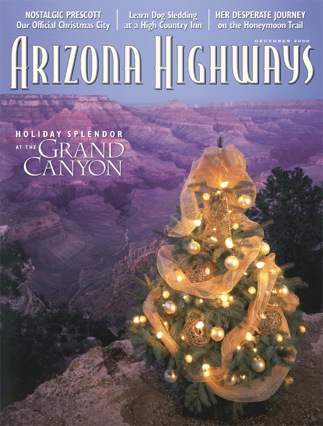 from the issue bright lights and festive decorations create seasonal magic as our tree visits the grand canyons south rim we dont do this anymore