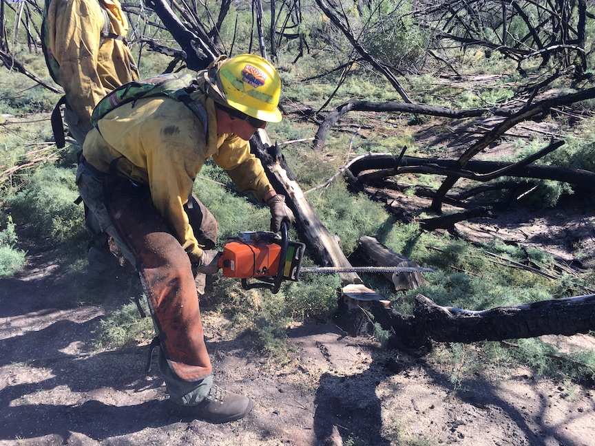 Wildland hand crew working along Salt River