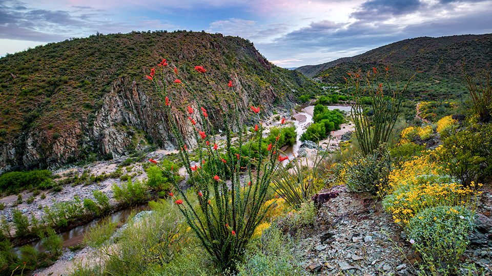 The Agua Fria River is one of the highlights on the southern end of the trail. | Joel Hazelton