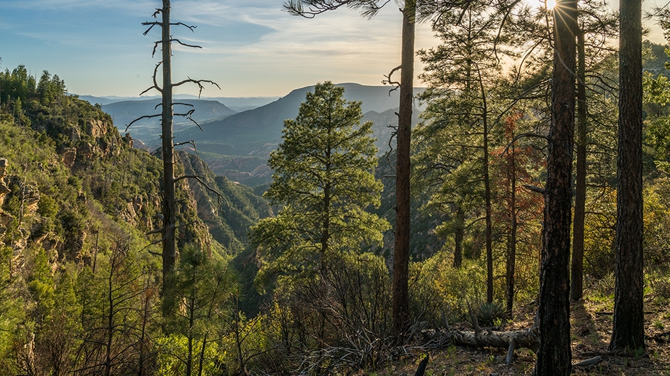 The Loy Canyon Trail leads to the top of Secret Mountain, which offers spectacular views of the canyon.   Laurence Parent