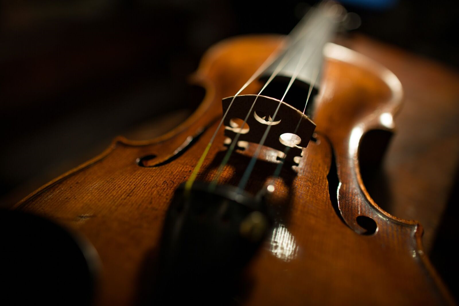 One of the violins from the Violins of Hope event. | Daniel Levin
