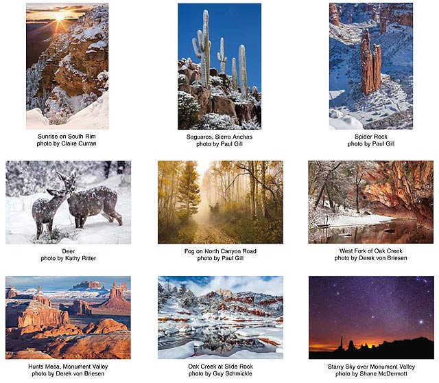 2015 Holiday Card Selection