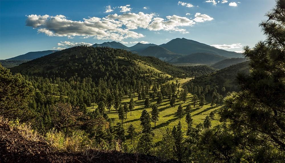 Photo Contest Past Winners | Visit Arizona