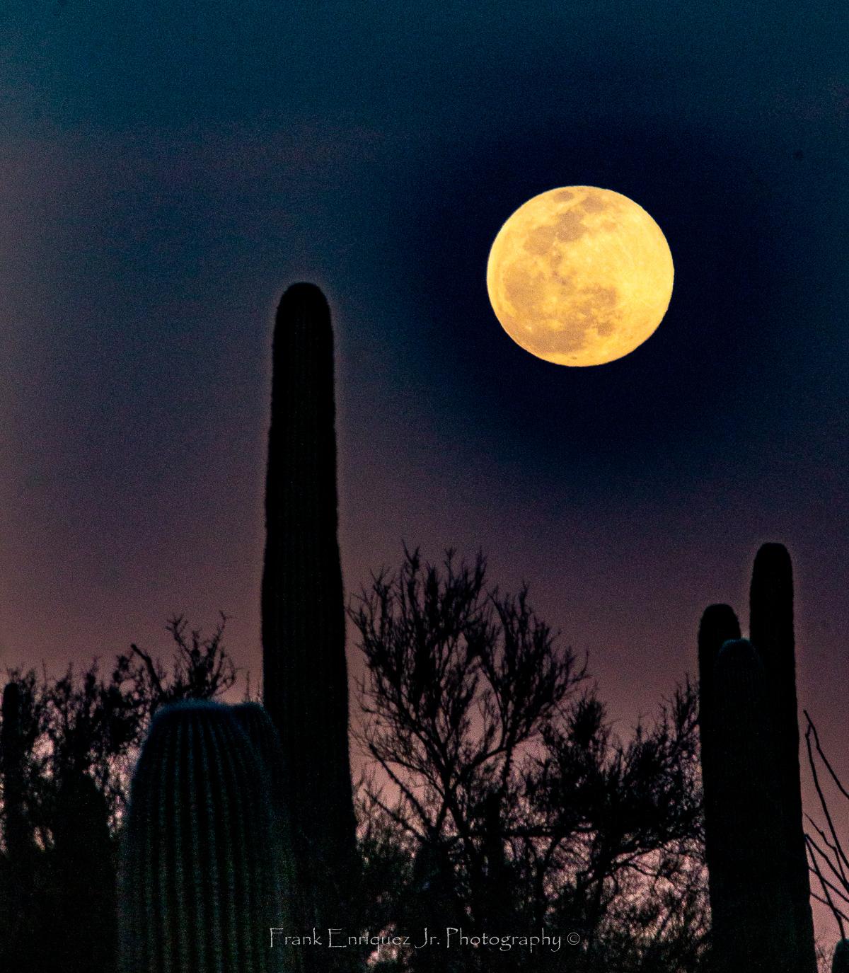 Photo by Frank Enriquez Jr.     Winter Full Moon