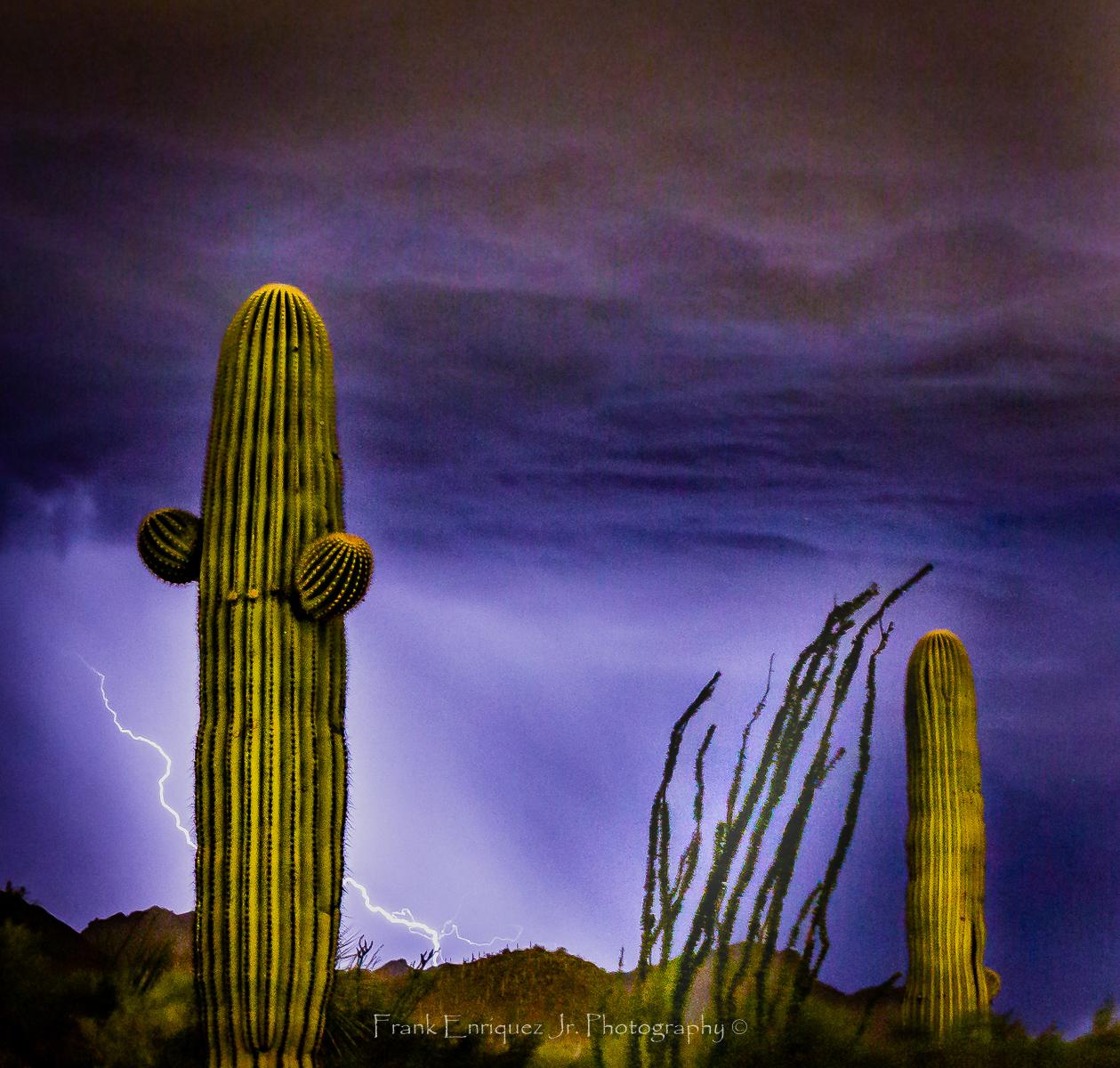 Photo by Frank Enriquez Jr.     Late Summer Monsoon Storm